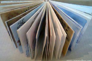 Imagen 11 Libro del viento Carmen Villoro