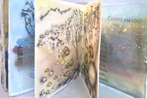 Imagen 16 Libro del viento Carmen Villoro